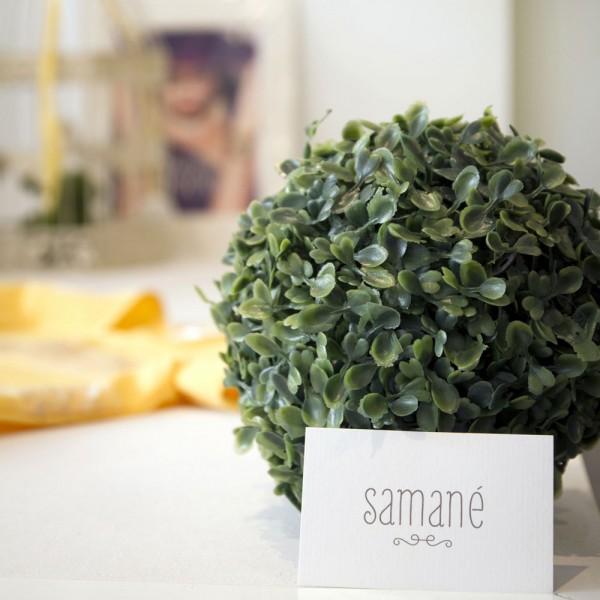 Samané Enea360 Proyecto